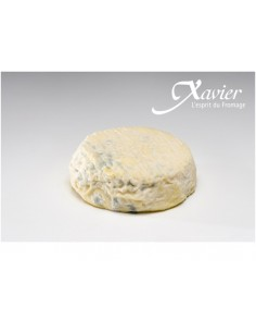 QUESO SAINT  MARCELLIN XAVIER